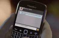Lime Merry Comercial Blackberry